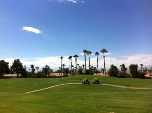 golfcartsDFCC